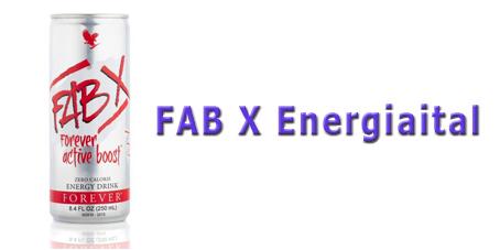 005 FAB X