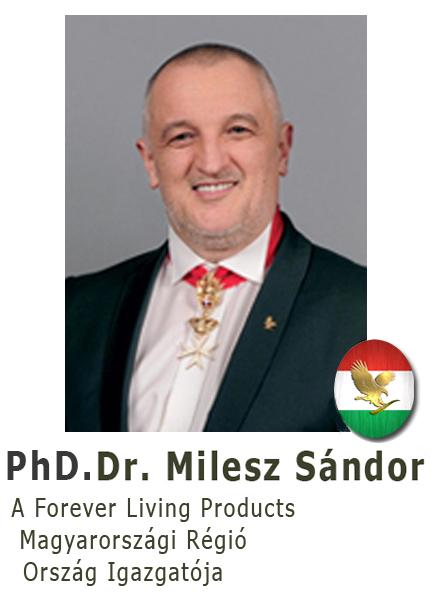 milesz-sandor-tablo