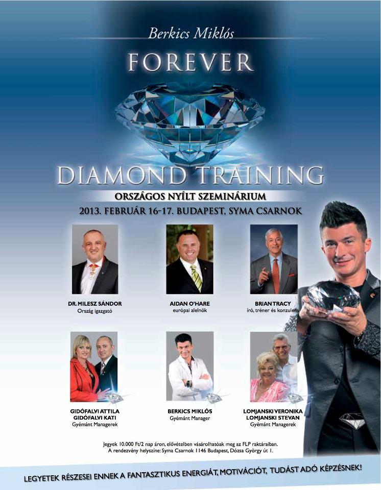 2013 02 16-17 Diamond Training Budapest ajánló