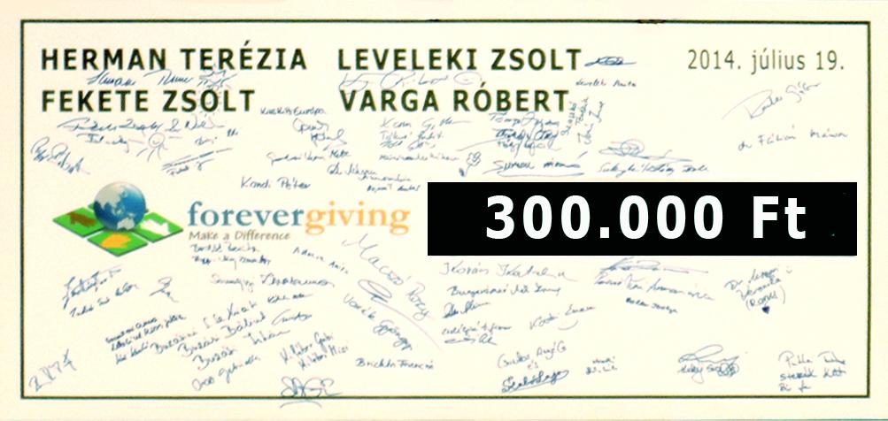 ForeverGiving300e
